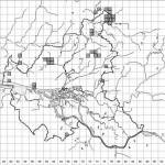 Wald-Bingelkraut (Mercuralis perennis) als Zeigerpflanze für historisch alte Wälder